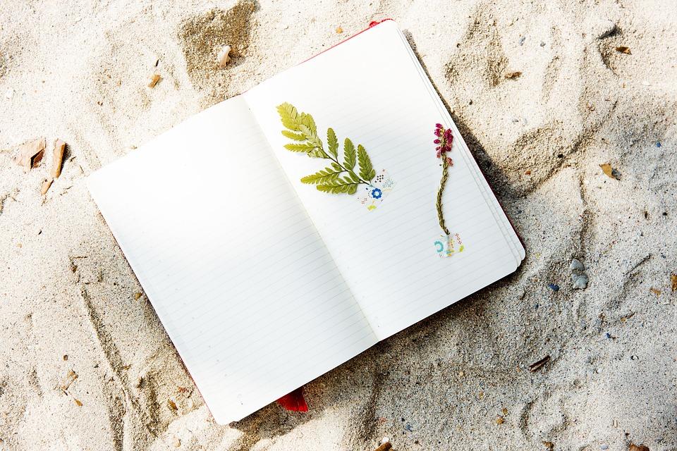 Beach Coast Craft Diary Flower Hobby Holidays